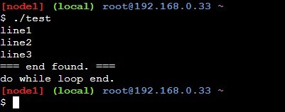 do while文でbreak文を使ったサンプルの実行結果